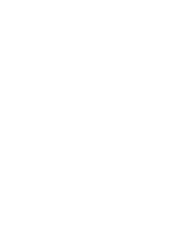 Das V.I.P. Party Package in Cancún